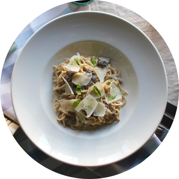 PICI WITH MORELS sauce AND porcini